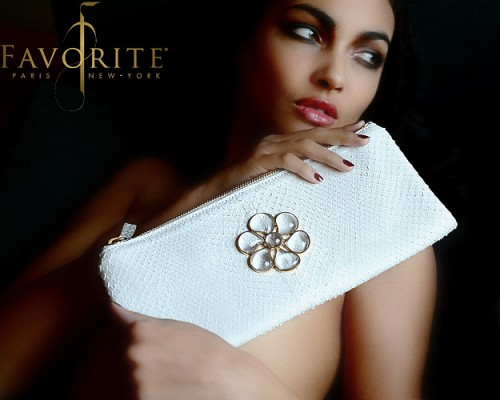 Luxurious and Clever Clutch Bag by Favorite Paris New York
